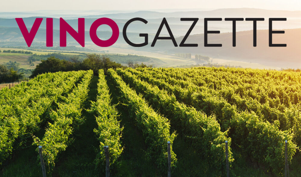 The Vino Gazette - February Issue 2019